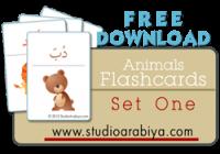Animals Flashcards Set One