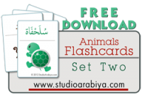 Animals Flashcards Set Two