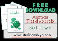 Animals Flashcards Set Two