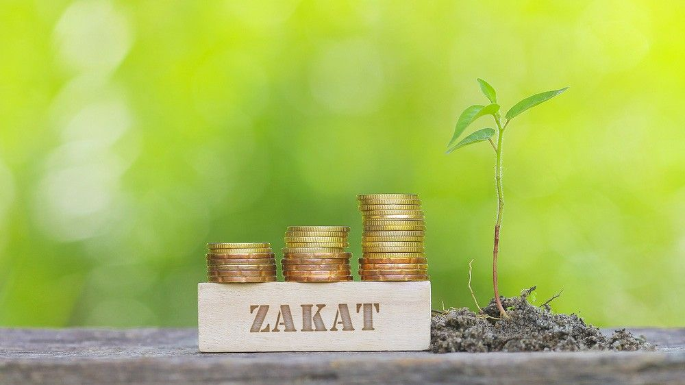 b2ap3_large_what_is_zakat islam - Blog - Results from #60