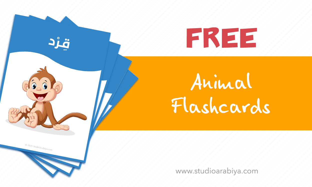 [FREE DOWNLOAD] Animal Flashcards Set B