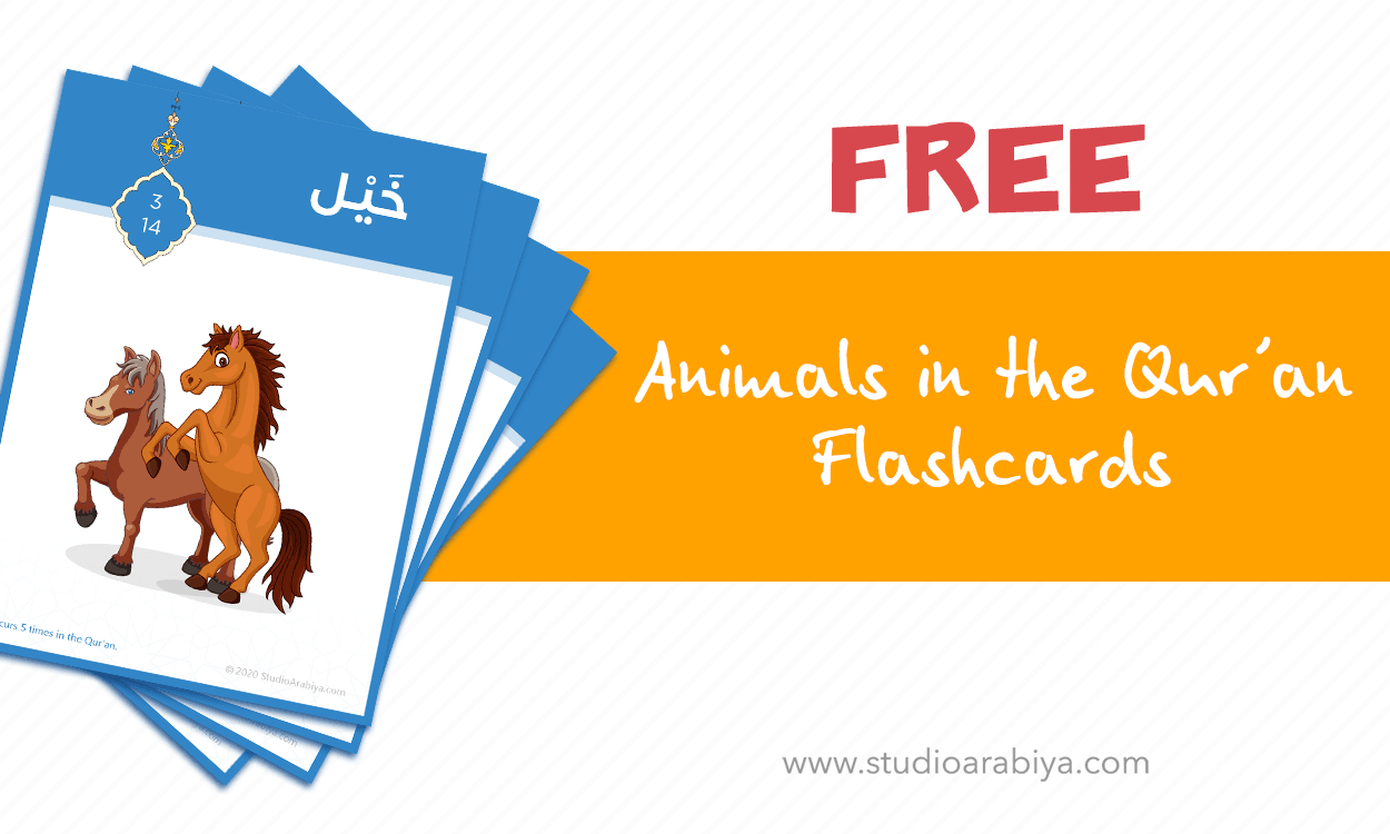 [FREE DOWNLOAD] Animals in the Quran Flashcards